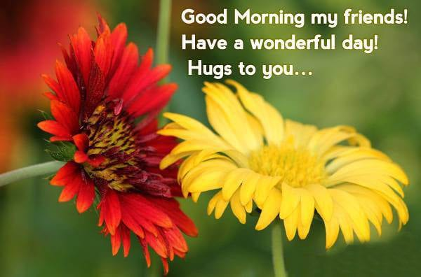 667844956-Good-Morning-Quotes-For-Friends-17