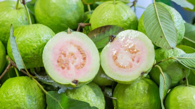 guava-benefits-625_625x350_71447741866