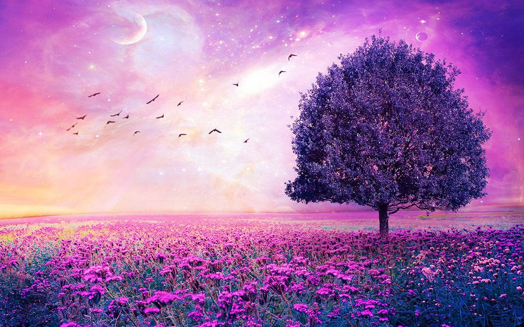 purple-flowers-field-art-tree-wide