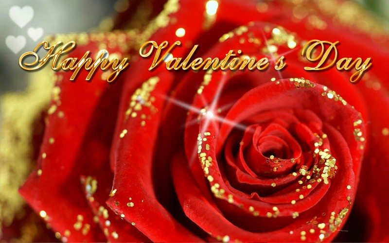 red-rose-flower-valentines-day-greeting-cards-designs-photos-happy-3d-animated-valentines-cards-images-2015-1