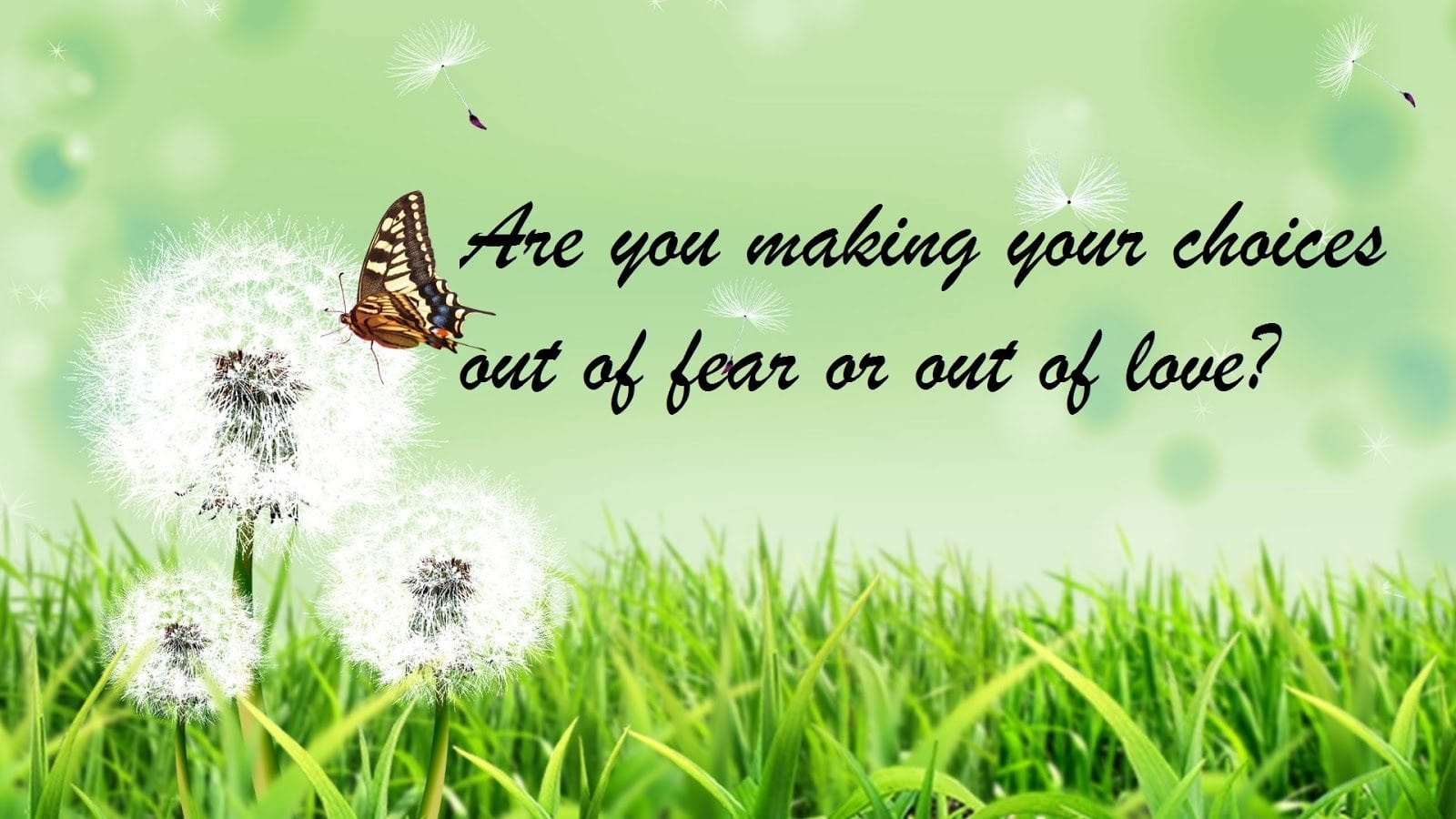 Are you making your choices out of fear or out of love?